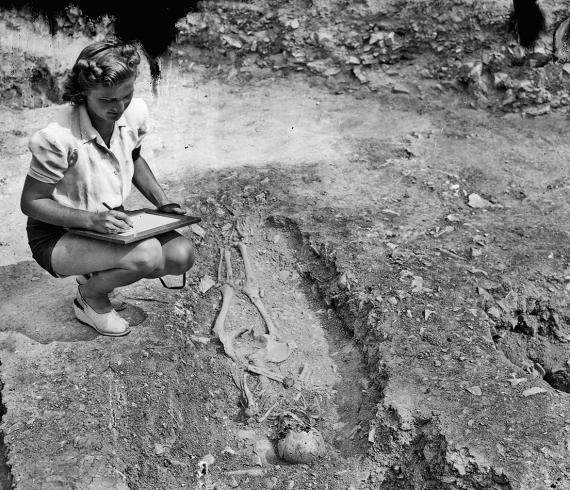 Pro archeology