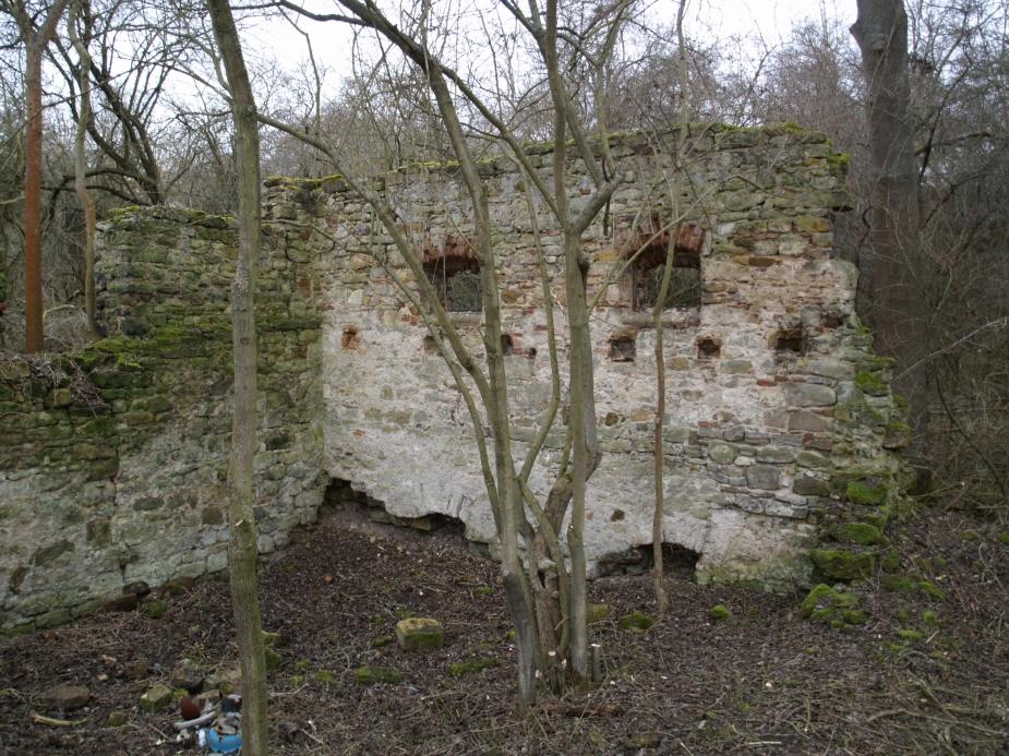 Zaniklý mlýn Valcha u Cvrčovic, nadzemní zbytky zdiva.