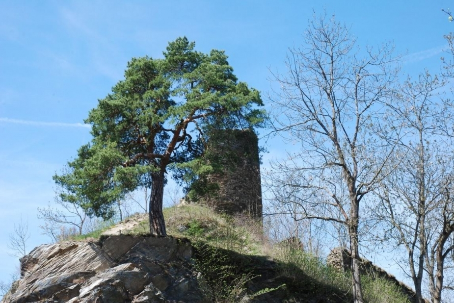 Torzo okrouhlé věže. Autor: D. Stráník.